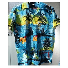 Chemise  hawaiënne lagon